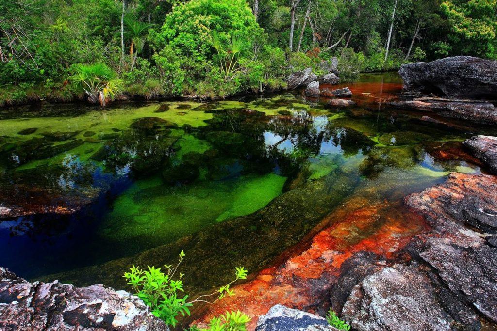 Caño Cristales, na Colômbia