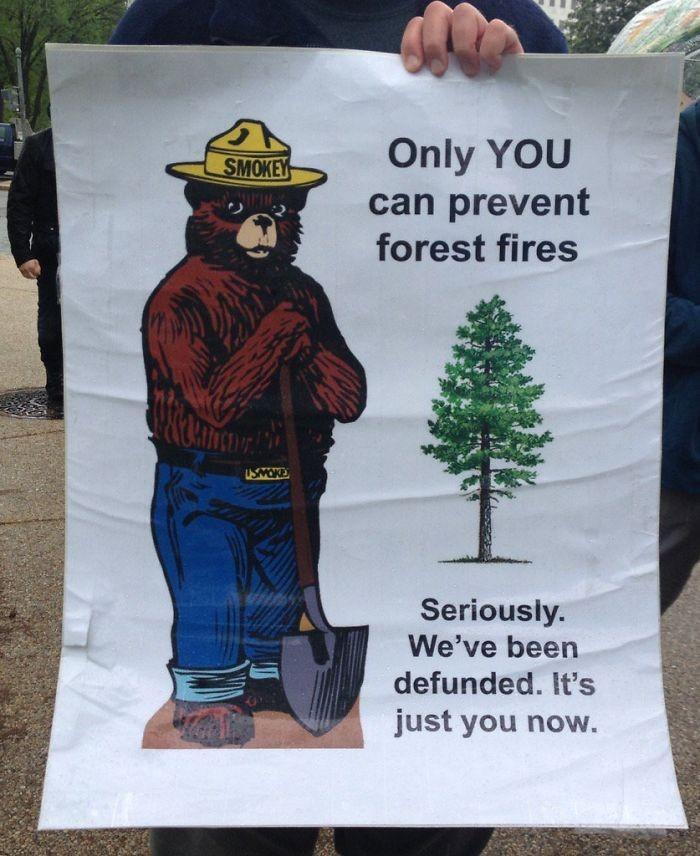 Só vocês podem prevenir os incêndios florestais. Sério. Fomos extintos. Só tem vocês agora. (Foto: Reprodução)